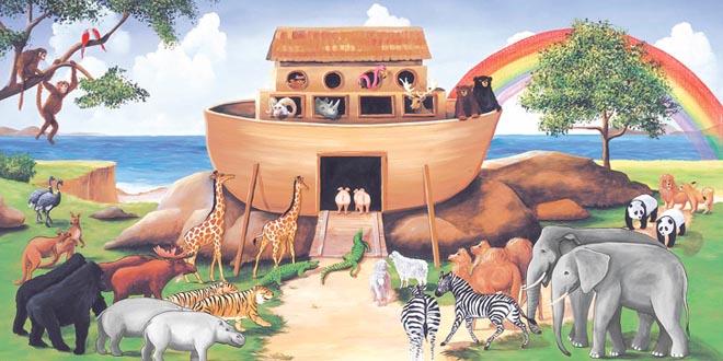 el arca de no supercurioso