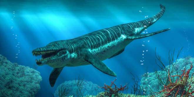 Kronosaurus - El monstruo que oculto jackes coustou