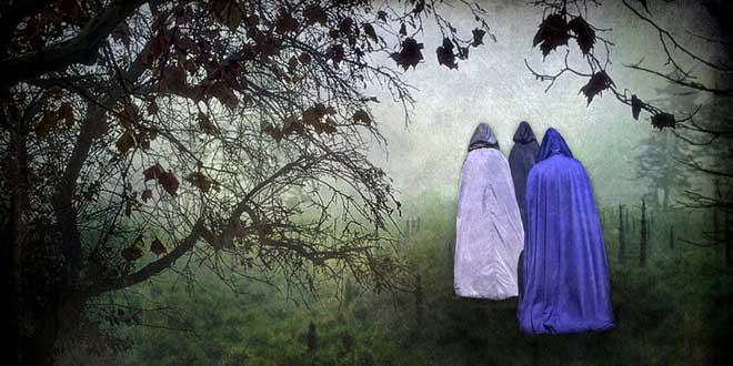 Brujas Bosque