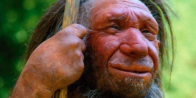 somos un poco neandertales