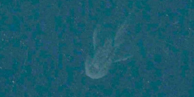 foto monstruo lago ness satelite apple