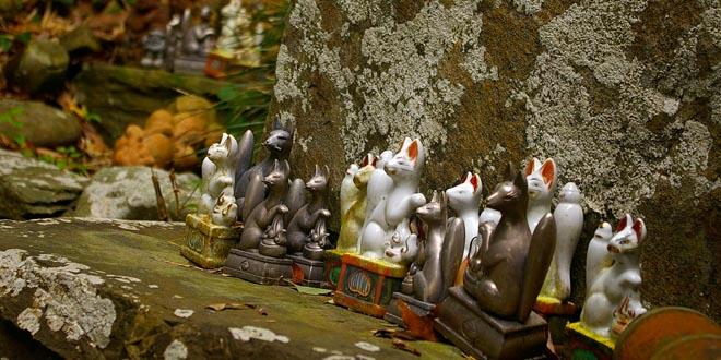 gatos japon simbologia
