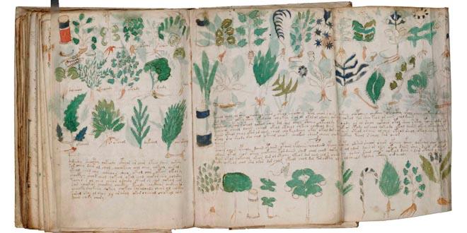 ooparts Manuscrito Voynich