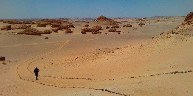 Wadi Al-Hitan 2