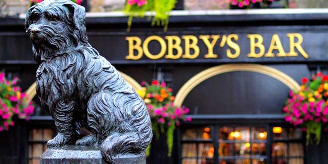 Bobby-el-perro-de-Edimburgo