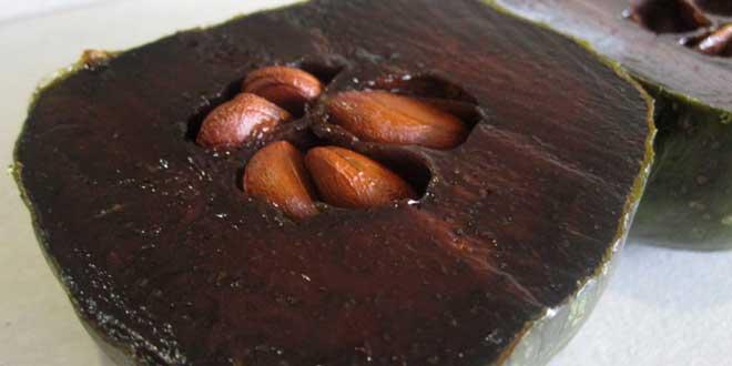 zapote-negro-chocolate